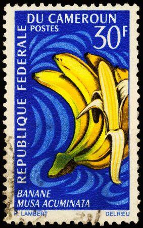 Moscow, Russia - January 14, 2020: stamp printed in Cameroon shows banana (Musa acuminata), series Fruits, circa 1967 Publikacyjne