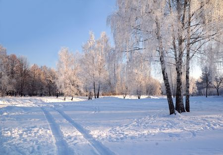 On the bright and sunny winter day in the town of Korolev not far away from Moscow near the urban canal.