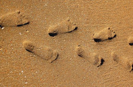 human being: Footprints of a human being on the sand on the beach.