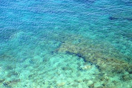 View of coral reef in crystal clear shivering water of the sea photo