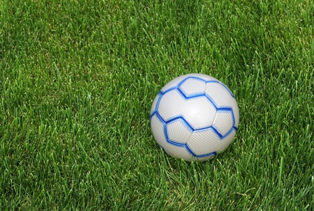Blue and white soccer ball on the green lawn Stock Photo - 10612452