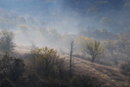 late fall: Foggy hilly contryside in the late fall Stock Photo