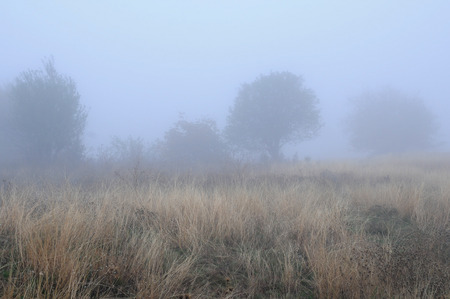 Fuzzy image of the foggy rural landscape in the fall in Bulgaria photo