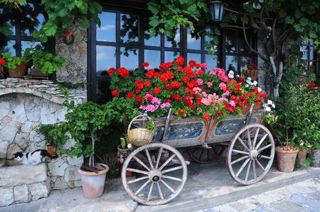 veliko tarnovo: Garden in the cart in the city of Veliko Tarnovo in Bulgaria