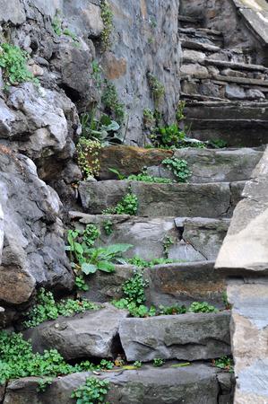 veliko tarnovo: Medieval staircase overgrown with weeds in the Old Town of Veliko Tarnovo in Bulgaria Stock Photo
