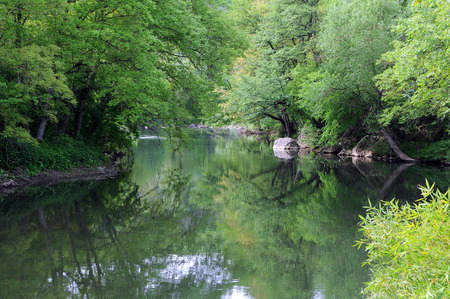yantra: Reflection of the trees in the Yantra river in Bulgaria