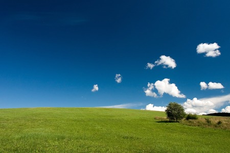 Summer abstract landscape with small white clouds and tree Standard-Bild