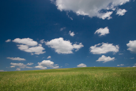 Green field and blue sky with cumulus clouds Stock Photo - 1414785