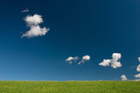 Green field and blue sky with cumulus clouds Stock Photo - 1414732