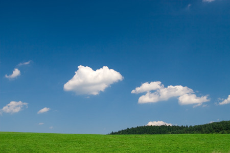 Green field and blue sky with cumulus clouds