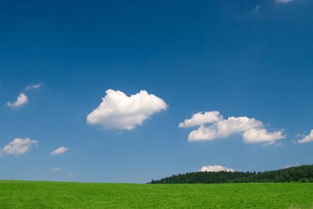 Green Field und blauer Himmel mit Cumulus-Wolken  Standard-Bild - 1463007