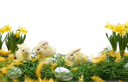Easter decoration with rabbits, eggs and narcissus flowers