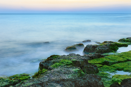 seaweeds: Ethereal long exposure shot of sea waves and rocks with green and brown seaweeds