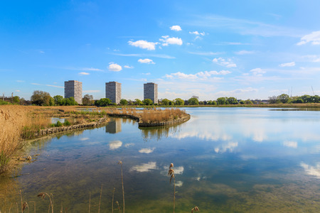 property development: Newly-opened Woodberry wetlands nature reserve at Woodberry Down in London on a sunny day