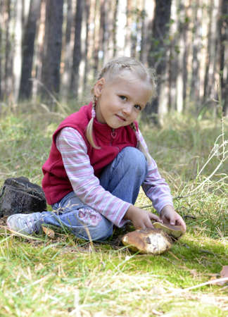 gathers: little girl gathers mushrooms in the forest
