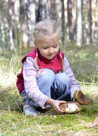gathers: bambina raccoglie funghi nel bosco Archivio Fotografico