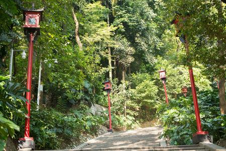 raod: mountain path