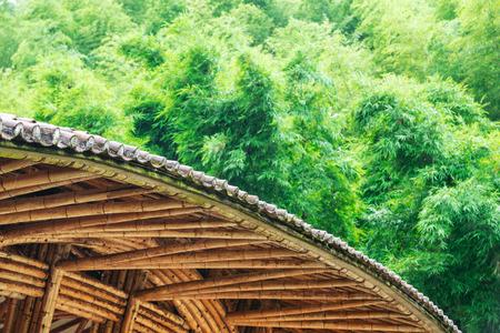 infrastructure buildings: bamboo bridge
