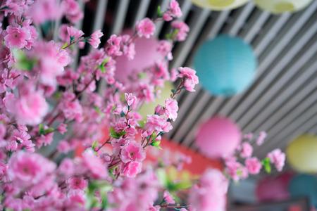 paper lantern: paper lantern and sakura flower Stock Photo