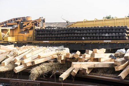 timber industry: timber industry