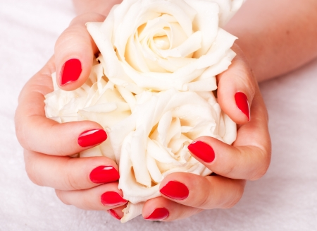 close-up of female hands with red nail polish on the background  flowers Stock Photo - 14600555