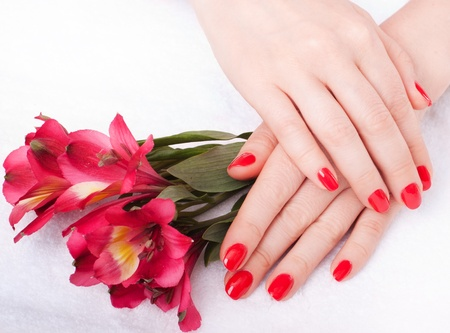 close-up of female hands with red nail polish on the background  flowers