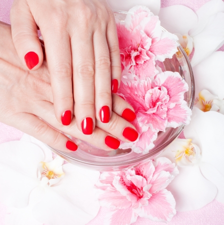 close-up of female hands with red nail polish on the background flowers Stock Photo