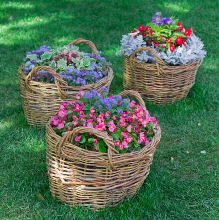 beautiful baskets of flowers in the garden landscape Stock Photo