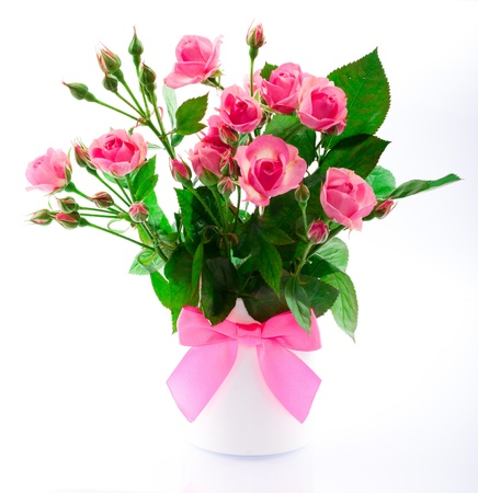 flowers in a vase on a white background Stock Photo - 17468111