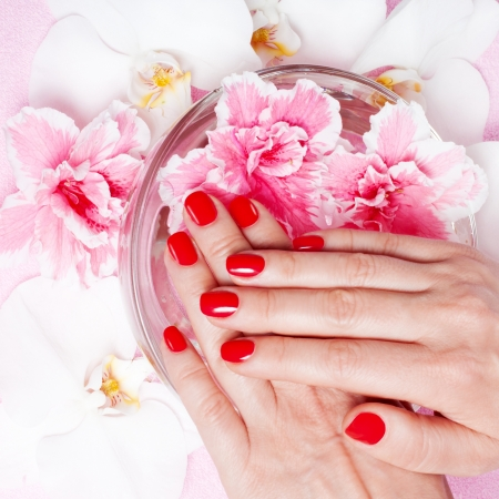 Red manicure with flowers Stock Photo - 18159013