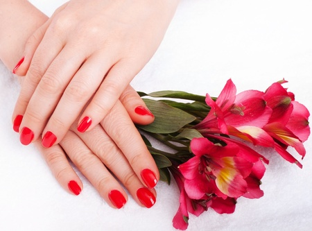 Closeup image of red manicure with flowers Stock Photo - 18159018