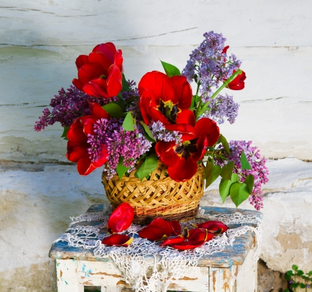 schöne Komposition von Blumen