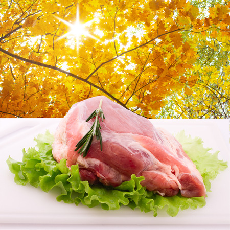 Food. Sliced ​​pieces of raw meat for barbecue on white surface. Meat raw steak. Beef steak bbq.  Spices for cooking meat. photo