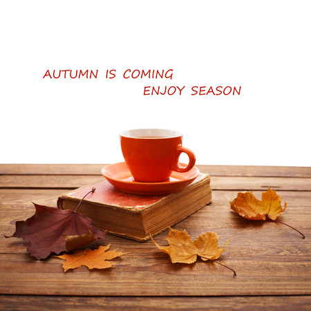 Autumn leaves, book and cup of tea on wooden table isolated on white background photo