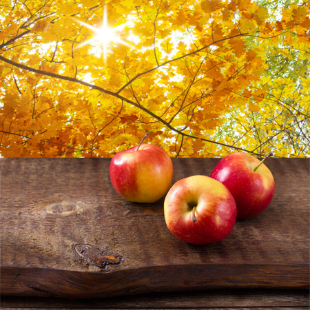 Apples on wooden table over autumn background photo
