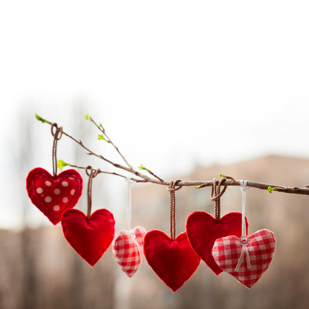 Valentine day love beautiful. Heart hanging on branch of tree. wedding day