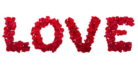 Love letters from petals of red roses on white background isolated horizontally. Flowers panorama photo