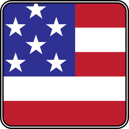 united state: United State of America flag on button vector