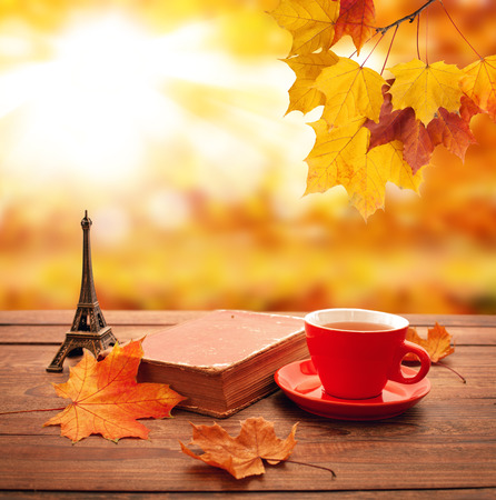 Autumn background. Autumn leaves, book and cup of tea on wooden table closeup in park.