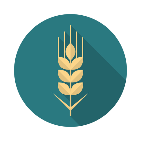 Wheat grain circle icon with long shadow. Flat design style. Wheat grain simple silhouette. Modern, minimalist, round icon in stylish colors. Web site page and mobile app design vector element.