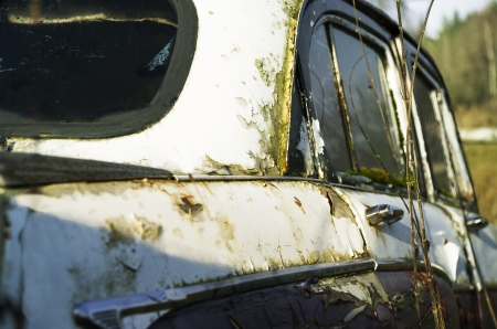 abandoned car in mould, outdoor closeup shot, focused on center of image