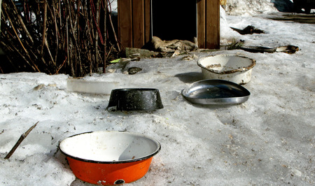 image of the empty dog s bowls, no food, outdoor shot, kennel in the background