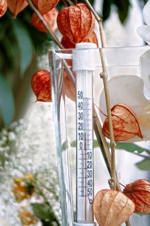 depth measurement: blurred image of an old analogue thermometer surrounded by flowers, concept of season change