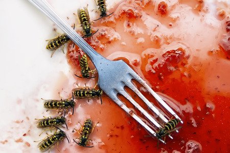 Overhead shot of the wasps around a spilled sweet jam and fork Stock Photo - 30429143