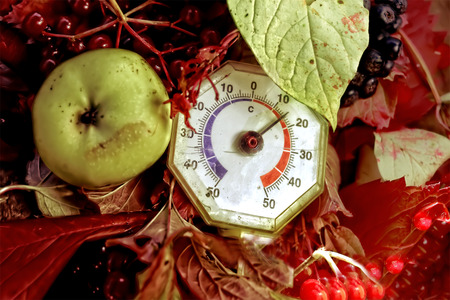 season specific: Overhead shot of an old thermometer, apple and rowan berries, concept of season specific. Shot with shallow DOF Stock Photo