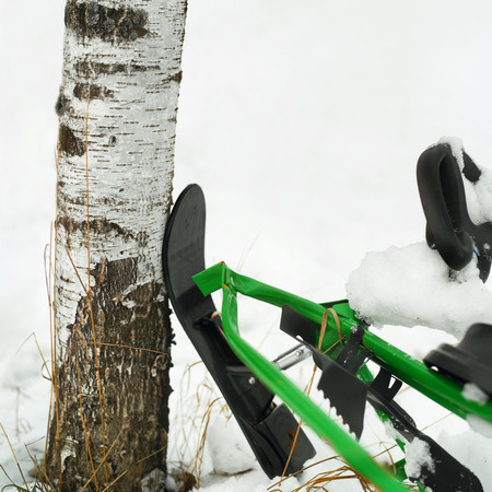 particular: Abandoned crashed snowmobile near the trunk, outdoor shot with particular focus