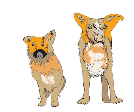 character traits: Illustration of two funny dogs over white