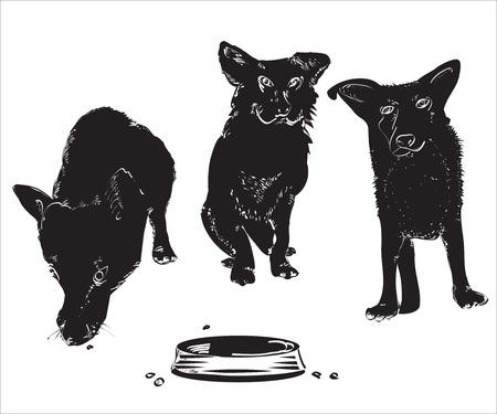 pareja comiendo: Siluetas de tthree perros divertidos cerca de un cuenco vacío, ilustración más de blanco Vectores
