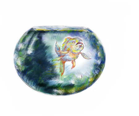fishbowl: Exotic fish in a round fishbowl, hand drawn illustration over white