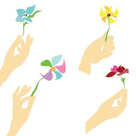 gently: Hand drawn in simple manner set of the human hands gently  holding assorted flowers